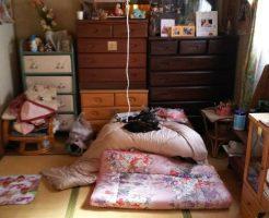 【福山市山手町】アパート一室分の不用品回収&ハウスクリーニング☆退去までに必要な作業をすべておまかせできるとご満足いただけました。