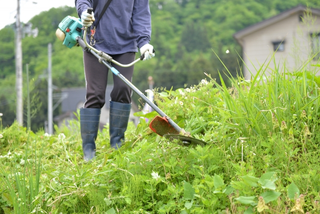 呉市で草刈りに最適な年3回の時期~楽に草刈りを終えるコツまで徹底解説
