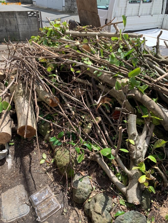 伐採した木の回収・処分ご依頼 お客様の声